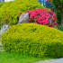 Top Considerations to Redesigning your Front Yard